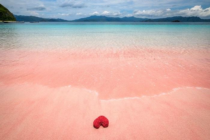 Komodo có một số bãi biển màu hồng với cát hồng tươi và nước màu ngọc lam - Đảo du lịch ở Indonesia