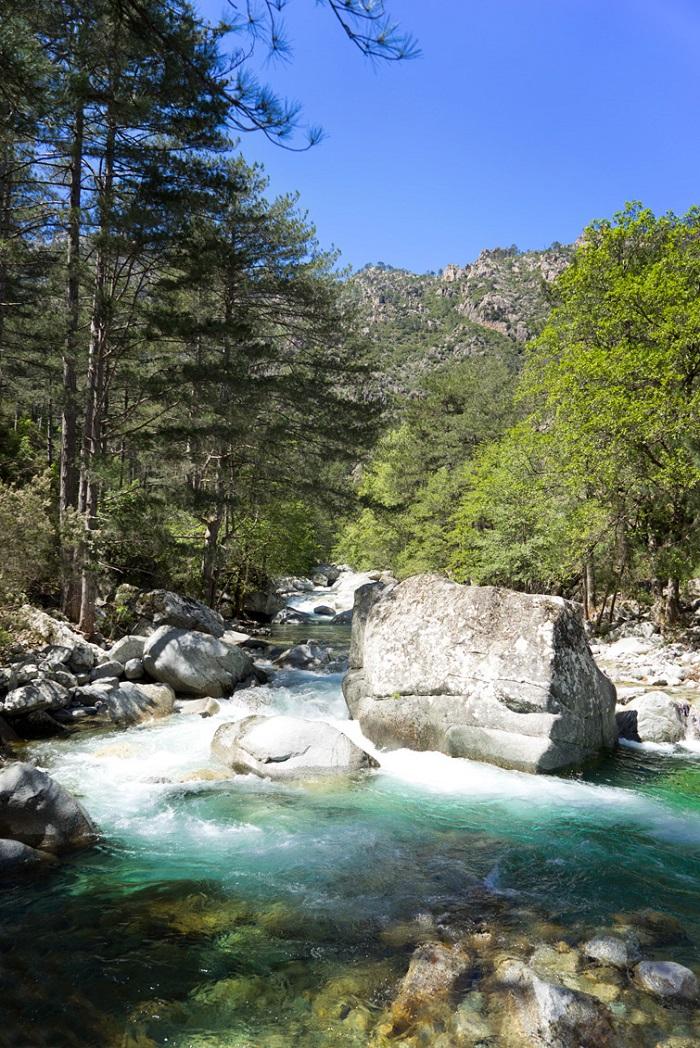 Mountain stream in the island of Corsica - Corsica Island, France