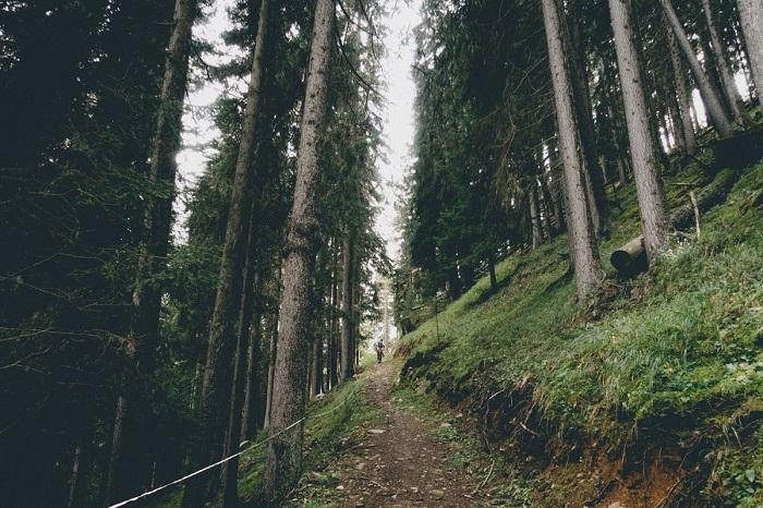 Lối vào Alp Da Munt - Vườn quốc gia Thụy Sĩ