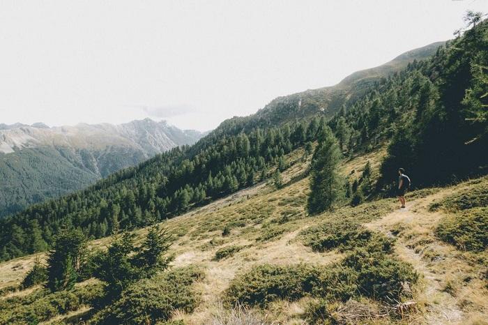 Con đường mở ra quang cảnh núi non - Vườn quốc gia Thụy Sĩ