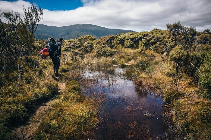 When the trail turns muddy Stewart Island