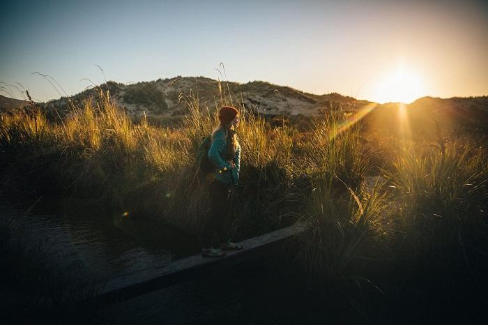 Rakiura Trail.  Stewart Island