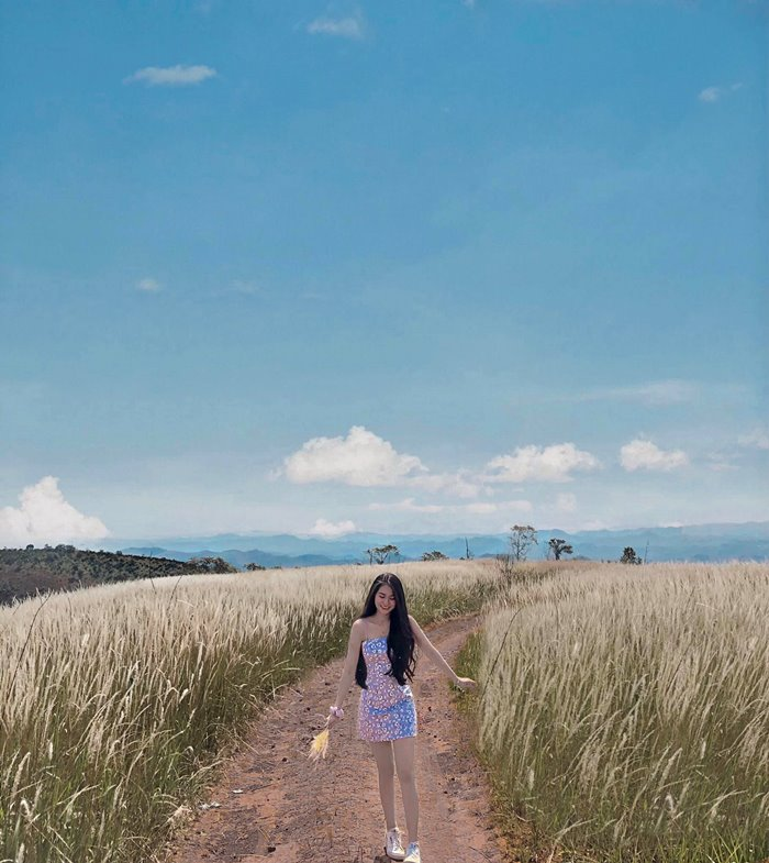 lối đi đồi cỏ tranh Đắk Nông