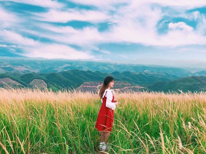 ngắm đồi cỏ tranh Đắk Nông