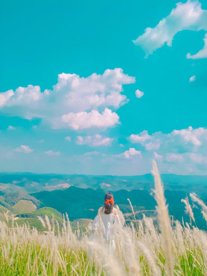 VẺ ĐẸP đồi cỏ tranh Đắk Nông