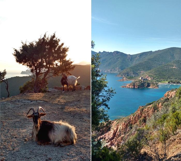 Parc Naturel Régional de Corse - Corsica Island, France