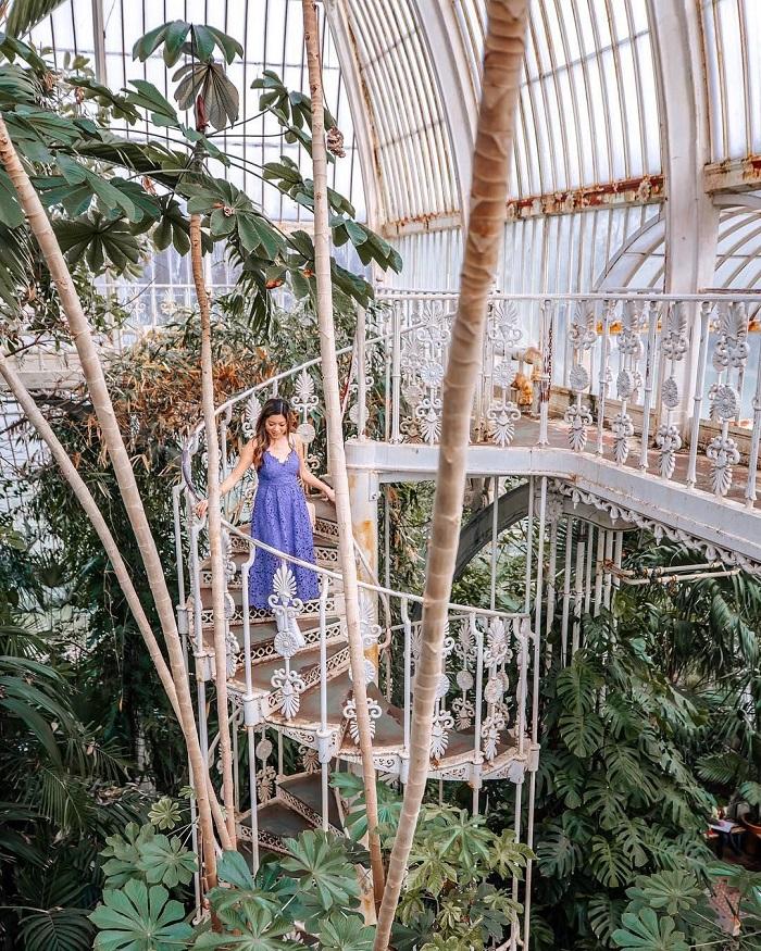 Vườn bách thảo Hoàng gia Kew - Vườn bách thảo đẹp nhất thế giới
