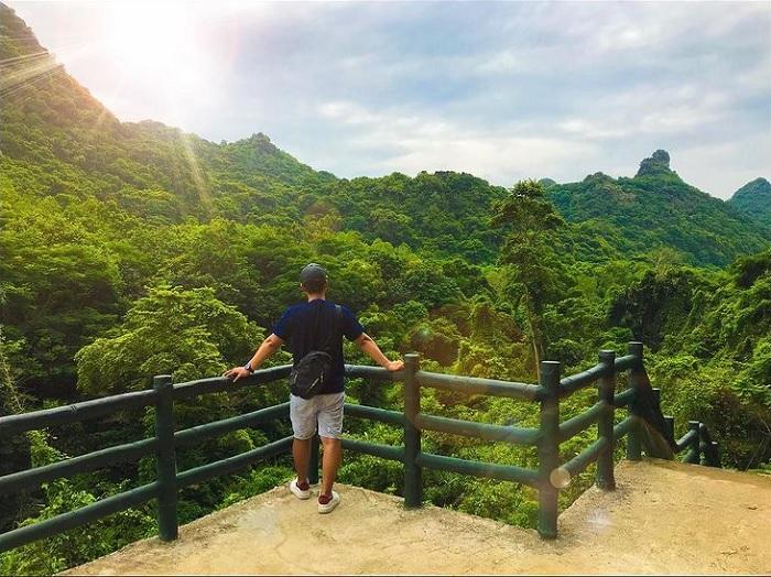 rừng xanh - khung cảnh đẹp xung quanh động Trung Trang Cát Bà