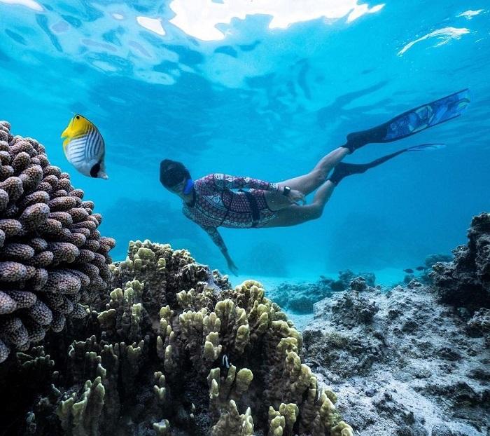 Lặn với ống thở ngắm san hô - Quần đảo Cook