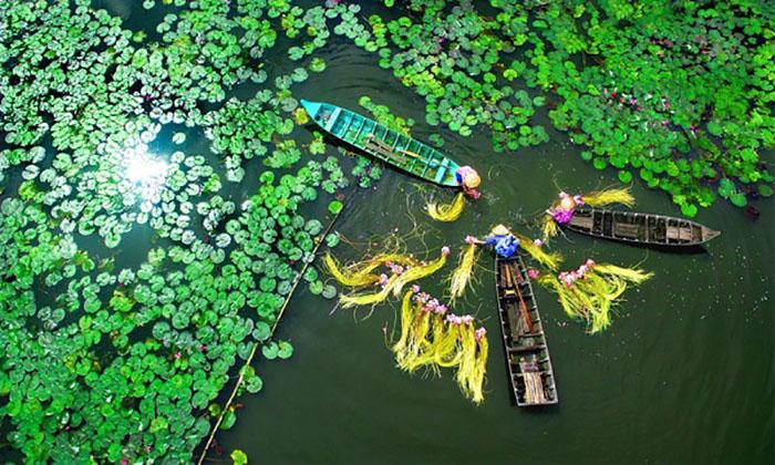 Săn ảnh ở hồ Latina An Giang - Miền sông nước
