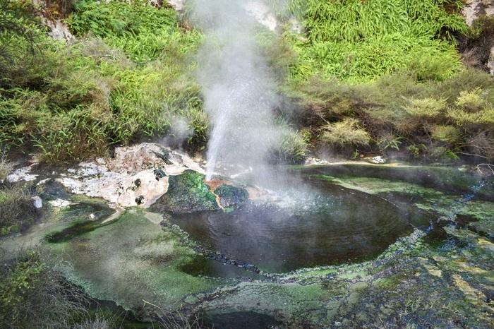 Những con suối nhỏ và mạch nước phun - Thung lũng núi lửa Waimangu