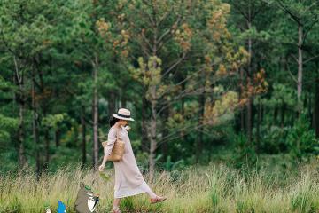 Đi du lịch Đà Lạt mùa nào đẹp để thuận lợi tham quan, chụp ảnh?