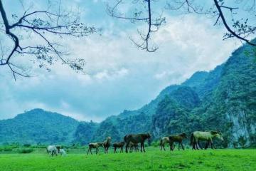 Yên bình làng du lịch sinh thái cộng đồng Hữu Liên Lạng Sơn