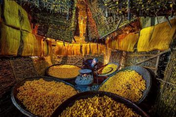 Làng nghề ươm tơ Hồng Lý: nơi giữ lửa nghề nong tằm né kén guồng tơ
