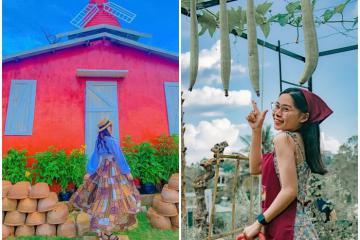 Nông trại cối xay gió Gia Lai - điểm check-in mới siêu đẹp ở phố núi