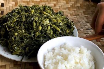 Bạn đã được thưởng thức đặc sản rau sắn chua Phú Thọ?