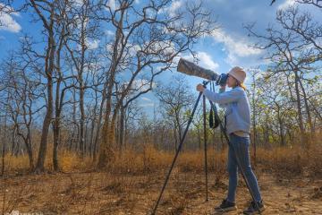 Vườn quốc gia Yok Đôn - chốn mơ giữa đại ngàn cho người yêu thiên nhiên