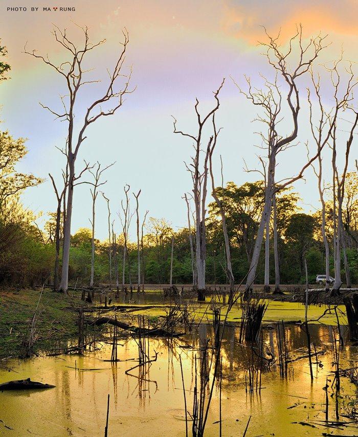 thời gian nên du lịch ở i vườn quốc gia Yok Đôn