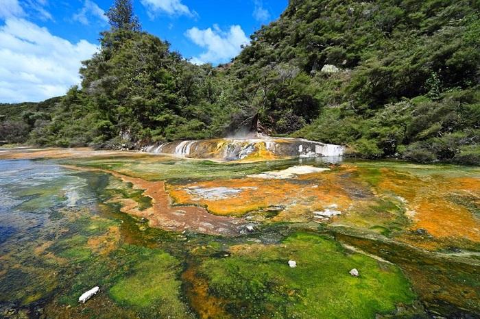 Những vi khuẩn có màu sắc rực rỡ che phủ những tảng đá nóng - Thung lũng núi lửa Waimangu
