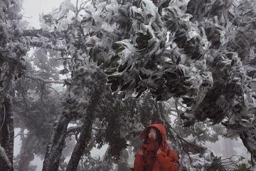 Trải nghiệm 4 mùa trên đỉnh Mẫu Sơn - Lạng Sơn
