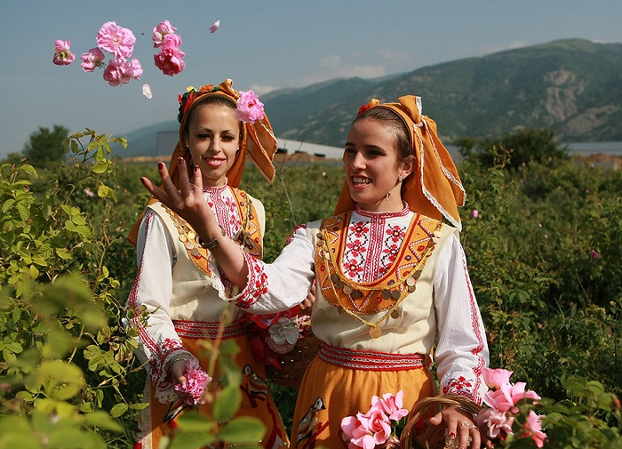 Interesting secrets about Bulgarian roses - beautiful flowers of love