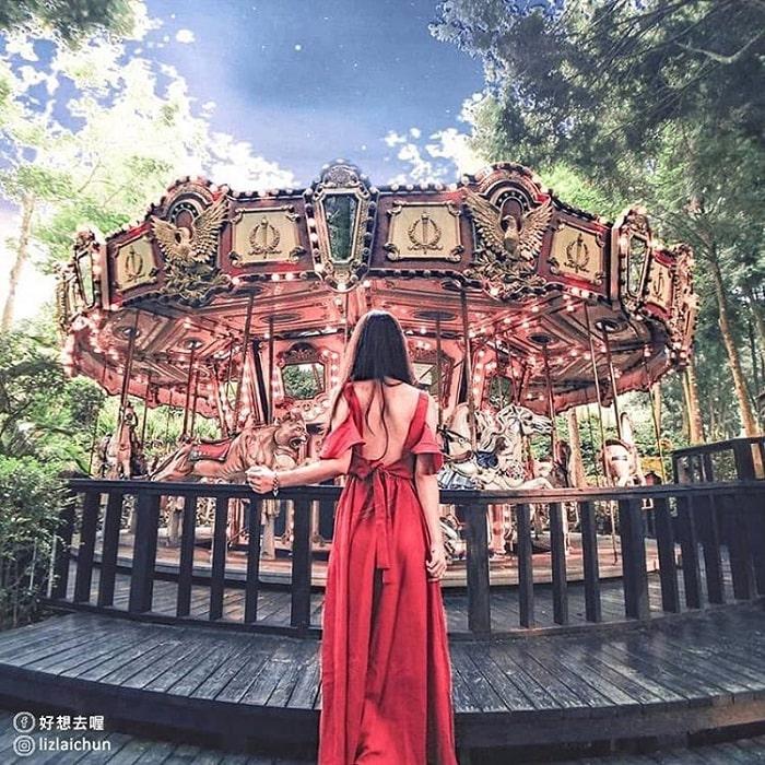 Yêu lắm sắc tím thơ mộng nơi rừng Oải Hương Đài Trung