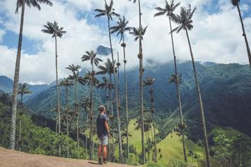 Lạc bước vào thung lũng Cocora - xứ sở thần tiên của những cây cọ khổng lồ