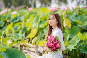 Rủ nhau đi check-in đầm sen Quang Châu đang vào mùa đẹp mãn nhãn ở Bắc Giang