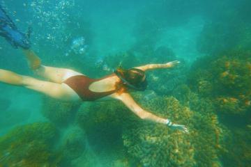 'Team cuồng biển' lưu lại ngay những điểm lặn ngắm san hô đẹp nhất cho hè này!