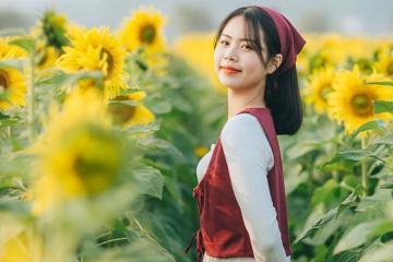 Phim trường Rose Garden Bắc Giang: cứ đi là có ảnh đẹp mang về