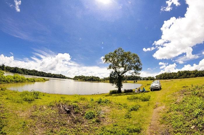 Trảng cỏ Bù Lạch Bình Phước - bức tranh xanh mướt từ thiên nhiên