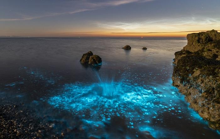Bãi biển phát quang ở Công viên Quốc gia Abel Tasman