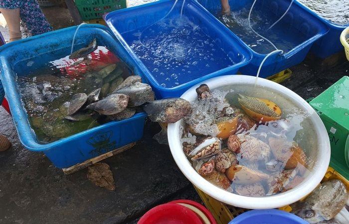 bãi Mến Nam Du- mua hải sản mang về