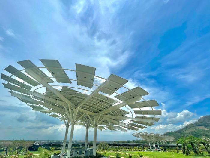 Check in khu du lịch điện mặt trời An Hảo - Bông hoa mặt trời