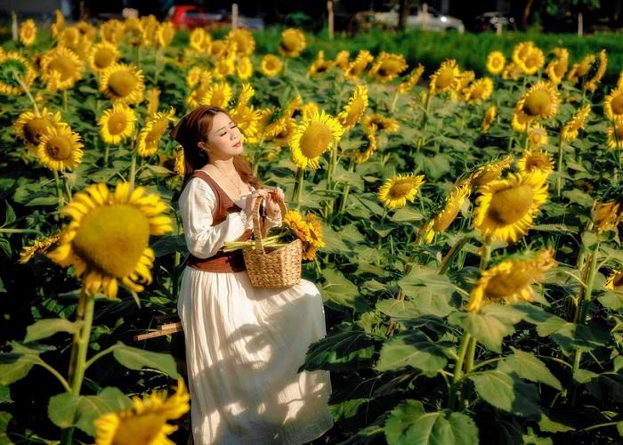 đồ vintage - trang phục chụp với Vườn Hoa Mặt Trời ở Bình Thuận