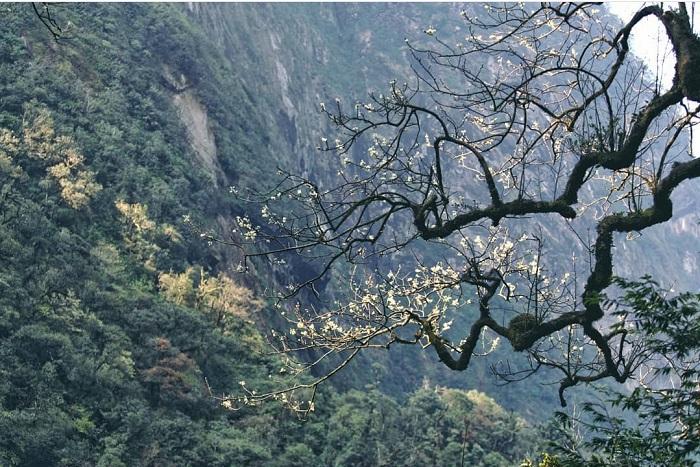 Vẻ đẹp của núi rừng Tây Bắc - Chinh phục Nam Kang Ho Tao