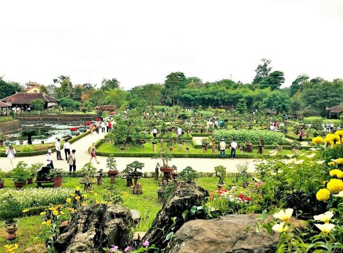 Explore Co Ha garden - a bonsai exhibition