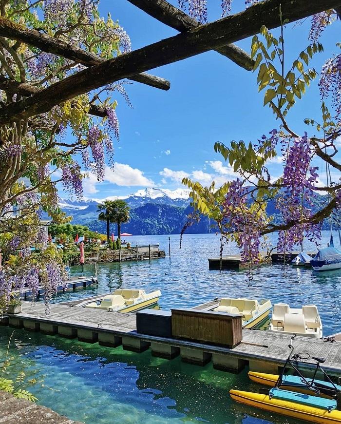 Lake Lucerne in summer - When to travel to Switzerland Sĩ