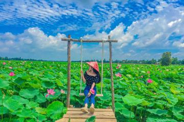 Ngẩn ngơ với ngàn sắc sen hồng ở khu du lịch Đồng Sen Gò Tháp