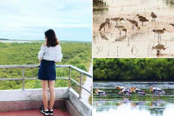 Điều gì thú vị đang chờ tại khu sinh thái Cồn Lu - Cồn Ngạn Nam Định?