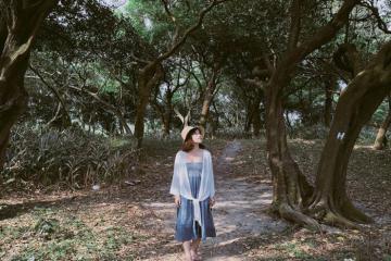 Rừng nguyên sinh Rú Lịnh - 'Lá phổi xanh' của du lịch Quảng Trị
