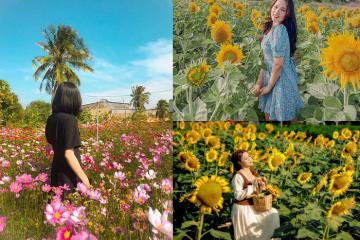 Sống ảo 'mệt nghỉ'tại Vườn Hoa Mặt Trời ở Bình Thuận