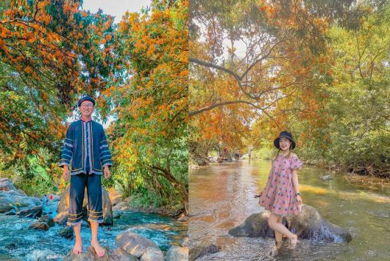 Ngỡ lạc đến mùa thu Châu Âu tại suối Tà Má Bình Định