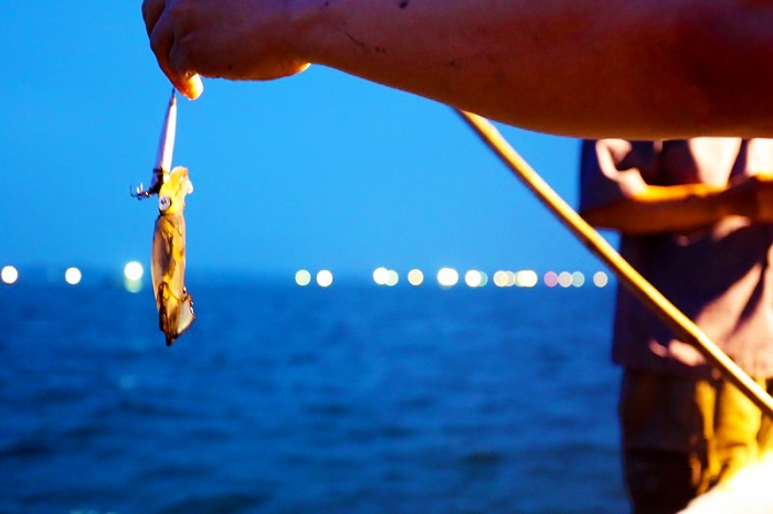Interesting experiences when traveling to Ha Long - night squid fishing