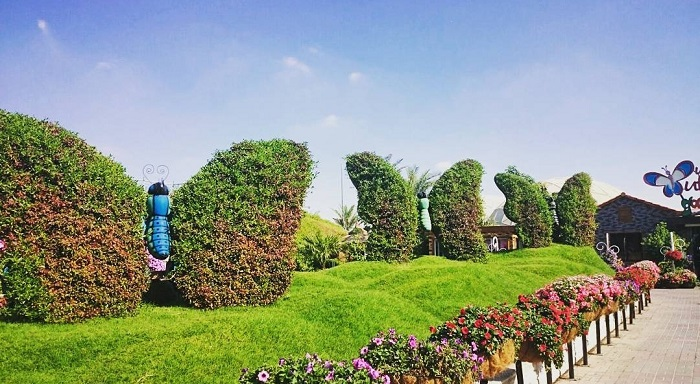Outdoor space Dubai Butterfly Garden