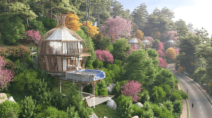 Super HOT 5 * resort: The Bird's Nest Resort is about to appear in Vietnam