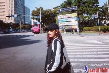 Tại sao nên book tour đi Hàn Quốc thay vì du lịch tự túc?
