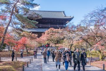 Top 6 ngôi đền có kiến trúc đẹp nhất ở Kyoto