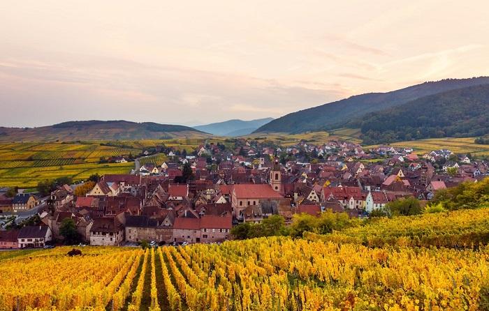 Ẩm thực mùa thu nước Pháp có gì đặc biệt?