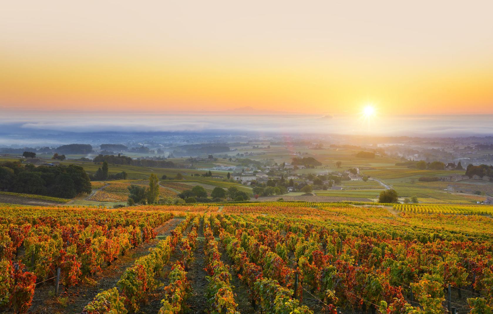 Ẩm thực mùa thu nước Pháp
